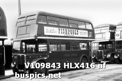 RT599 - HLX419 was based at Hertford and was painted in the country livery